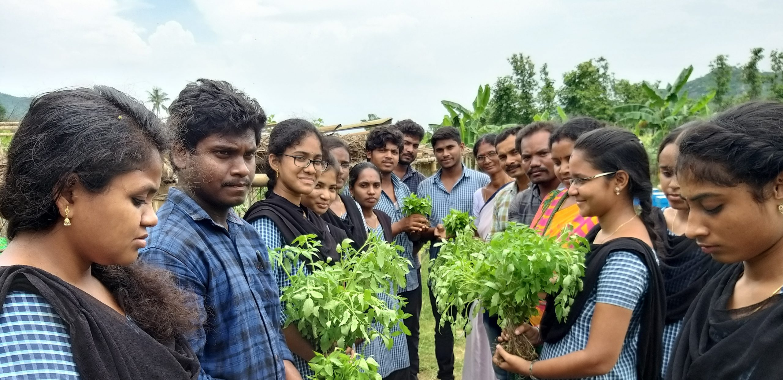 Seedlings distributed to FPC members